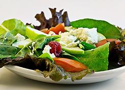 special-diet1-246×177